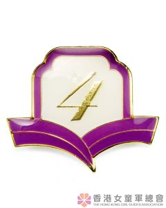 Golden Guide Year Badge 4