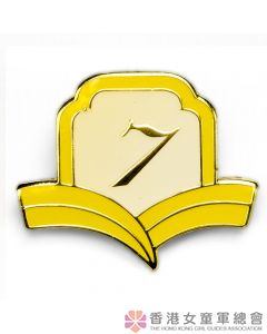 Golden Guide Year Badge 7