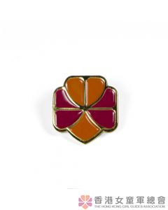 Tri-colour Friendship Pin