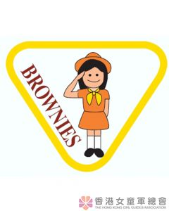 Brownie Drill and Ceremony