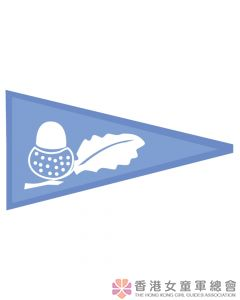 Conservation Pennant